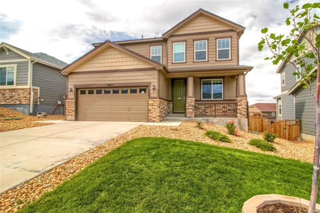 7423 Oasis Drive, Castle Rock, CO 80108 (#2206811) :: Arnie Stein Team | RE/MAX Masters Millennium