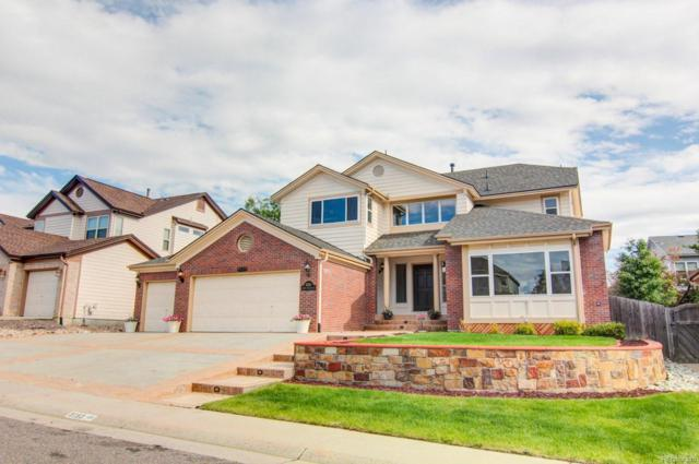 9159 S Princeton Street, Highlands Ranch, CO 80130 (#2210173) :: The City and Mountains Group