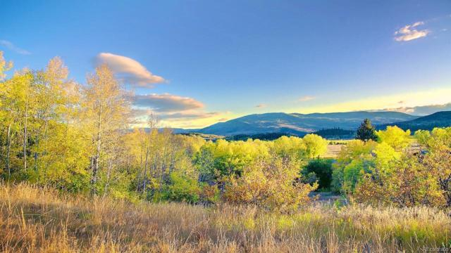 32290 County Road 38, Steamboat Springs, CO 80487 (#2210478) :: The Heyl Group at Keller Williams