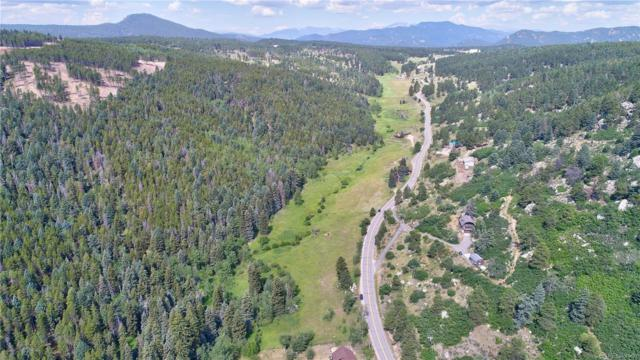 Pleasant Park Road, Conifer, CO 80433 (#2212142) :: Sellstate Realty Pros