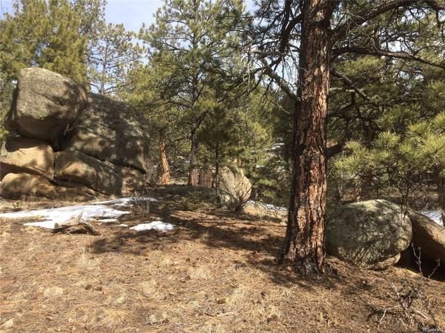 20153 Spring Creek Trail, Buffalo Creek, CO 80470 (#2215767) :: The Gilbert Group