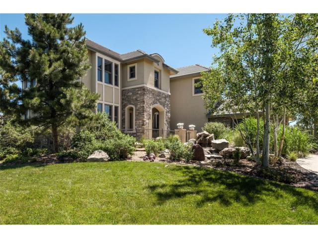 6131 Missouri Peak Place, Castle Rock, CO 80108 (#2217256) :: RE/MAX Professionals