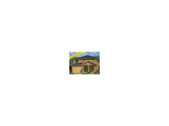 176 Piney Creek Lane, Erie, CO 80516 (MLS #2218679) :: 8z Real Estate
