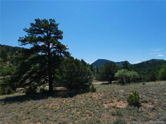 129/185 Big Bow Drive, Cotopaxi, CO 81233 (MLS #2220832) :: 8z Real Estate