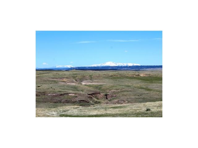 Calhan Highway, Calhan, CO 80808 (#2221832) :: The DeGrood Team