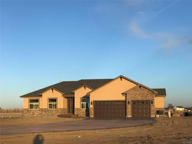 14830 Indian Court, Brighton, CO 80603 (#2224582) :: The Peak Properties Group