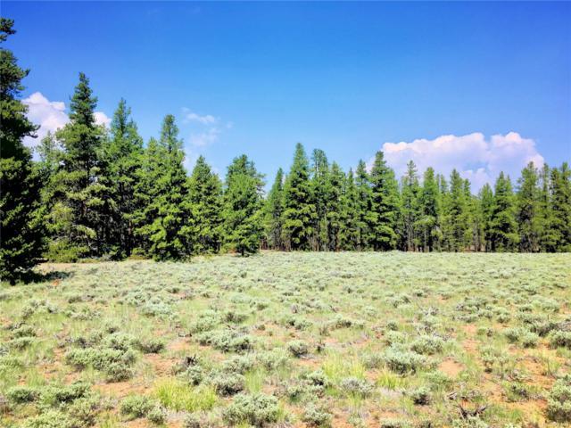3 Elk Run, Leadville, CO 80461 (MLS #2230353) :: 8z Real Estate