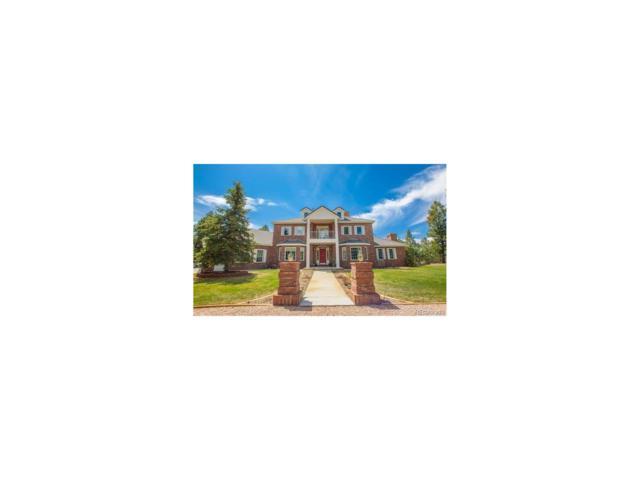 14920 Roller Coaster Road, Colorado Springs, CO 80921 (MLS #2231471) :: 8z Real Estate