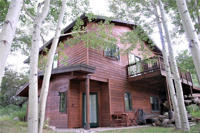 33625 Sky Valley Drive, Steamboat Springs, CO 80487 (#2237968) :: The Dixon Group