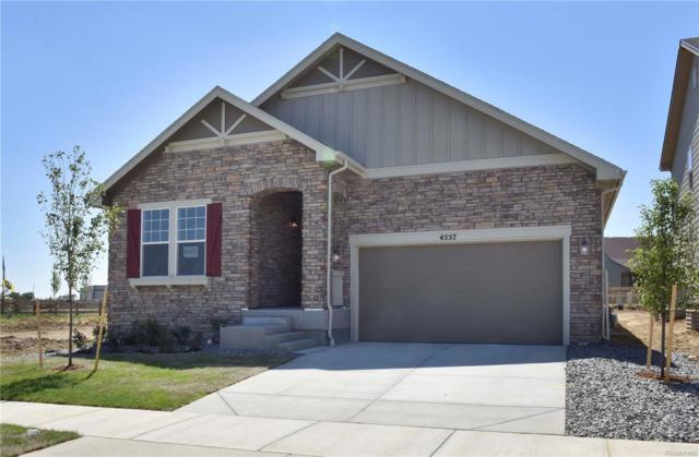 4557 Heatherhill Street, Longmont, CO 80503 (#2239599) :: Bring Home Denver