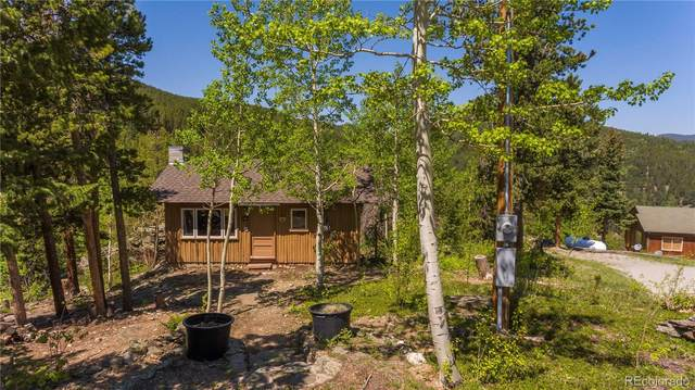 19 Valley View Lane, Evergreen, CO 80439 (#2241328) :: The DeGrood Team