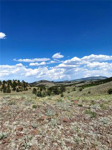 Chickasaw Road, Hartsel, CO 80449 (MLS #2243838) :: Bliss Realty Group