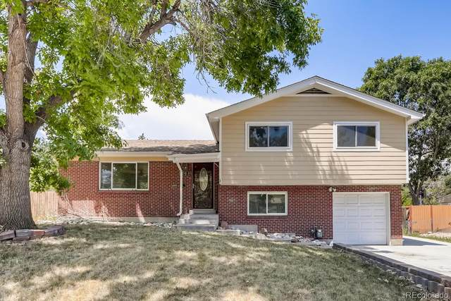 6681 S High Street, Centennial, CO 80121 (MLS #2244645) :: 8z Real Estate