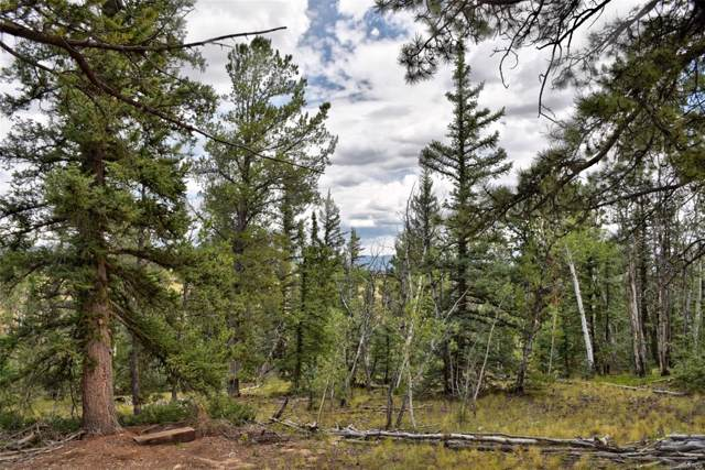 167 Smith & Wesson Road, Como, CO 80432 (MLS #2245917) :: 8z Real Estate