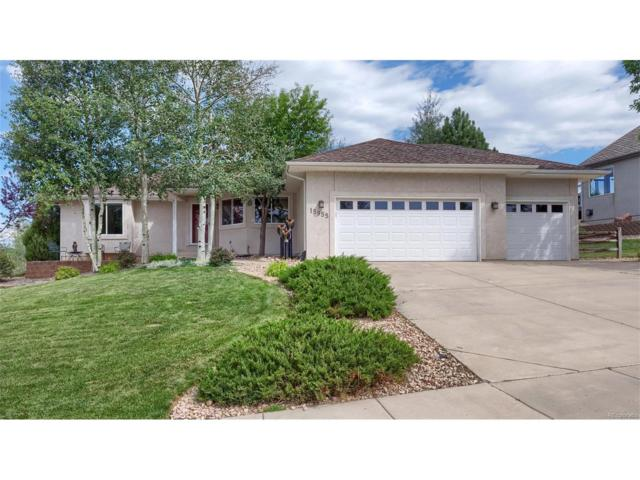 15955 Holbein Drive, Colorado Springs, CO 80921 (MLS #2246919) :: 8z Real Estate