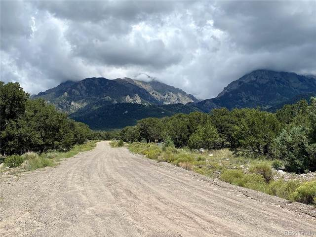 1176 Brookview Way, Crestone, CO 81131 (MLS #2247458) :: Bliss Realty Group