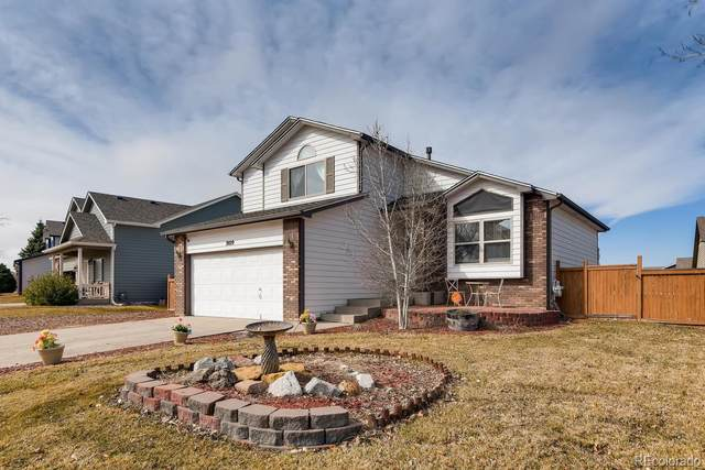 2029 74th Avenue, Greeley, CO 80634 (MLS #2249839) :: 8z Real Estate