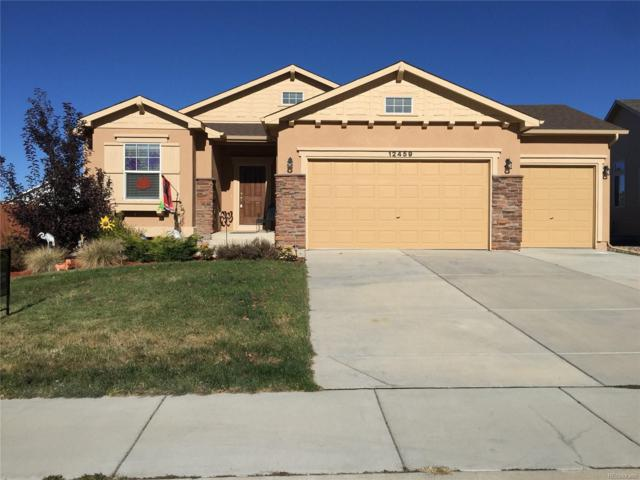 12459 Handles Peak Way, Peyton, CO 80831 (#2250307) :: The City and Mountains Group
