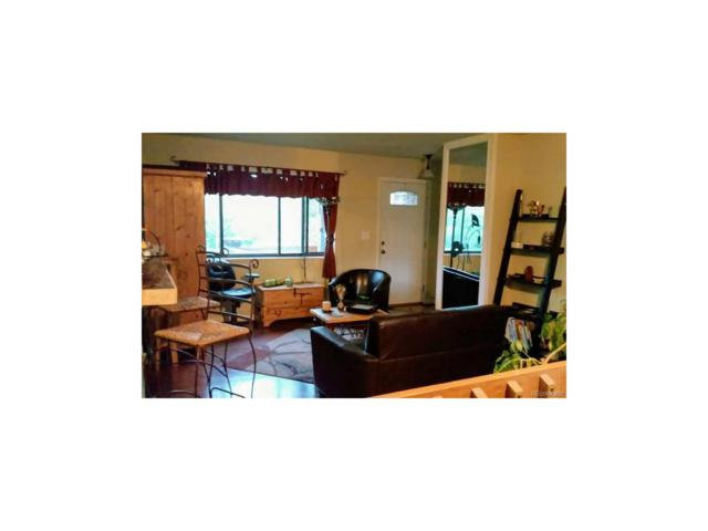 1394 S Sierra Drive, Castle Rock, CO 80104 (MLS #2251111) :: 8z Real Estate