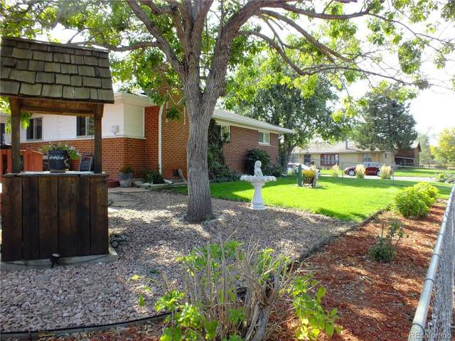 10 S Fenton Street, Lakewood, CO 80226 (#2253064) :: The DeGrood Team