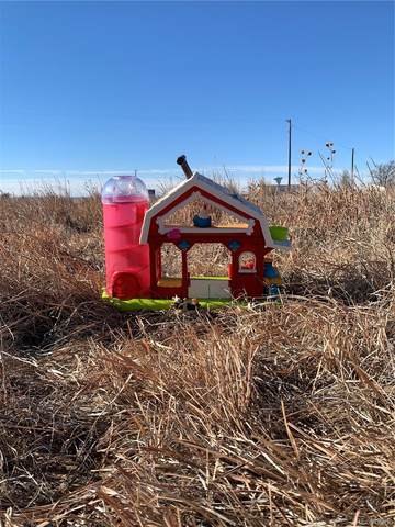 13550 Deter Winters Road, Denver, CO 80229 (#2254805) :: Kimberly Austin Properties