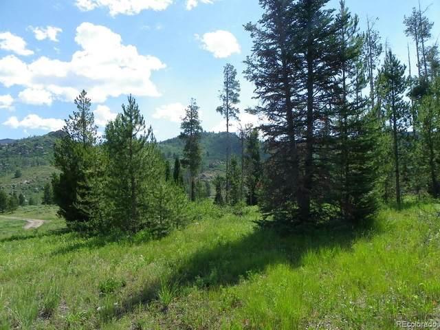 20780 Hame Trail, Oak Creek, CO 80467 (#2257687) :: The DeGrood Team