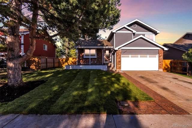 6001 S Quail Way, Littleton, CO 80127 (MLS #2257959) :: Find Colorado