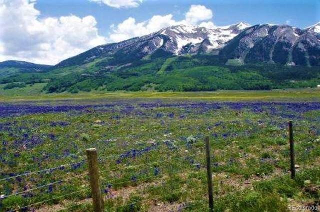 734 S Avion Drive, Crested Butte, CO 81224 (MLS #2259492) :: Neuhaus Real Estate, Inc.