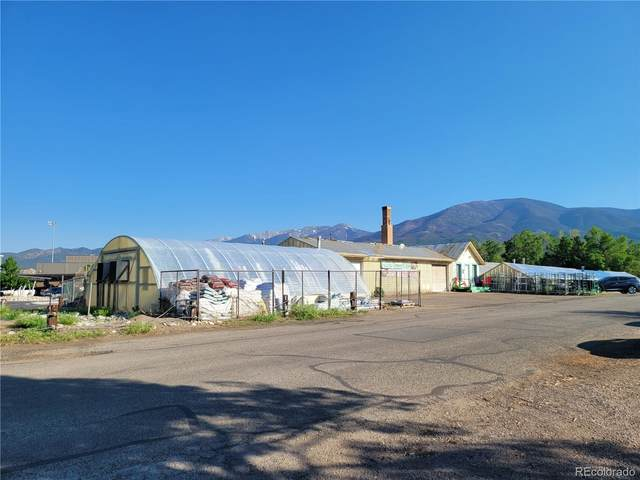 1025 D Street, Salida, CO 81201 (#2263242) :: Wisdom Real Estate