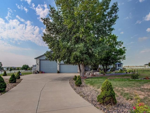 8164 E 159th Court, Thornton, CO 80602 (#2265410) :: The Heyl Group at Keller Williams