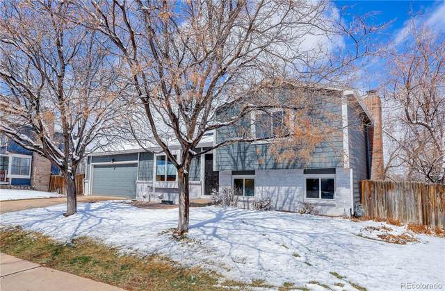 11305 W Powers Avenue, Littleton, CO 80127 (#2272173) :: Finch & Gable Real Estate Co.