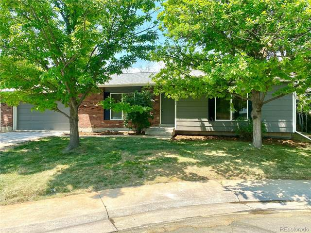 10901 Albion Court, Thornton, CO 80233 (#2273705) :: The DeGrood Team