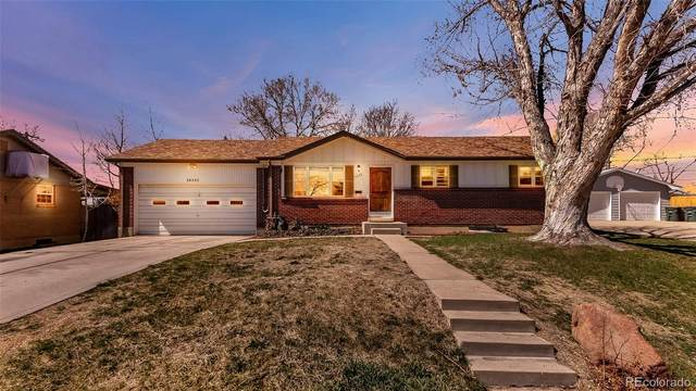 11339 Marion Street, Northglenn, CO 80233 (#2276991) :: Finch & Gable Real Estate Co.