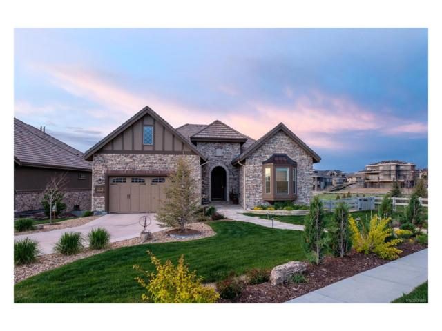 10920 Capstone Court, Highlands Ranch, CO 80126 (#2277405) :: The Peak Properties Group