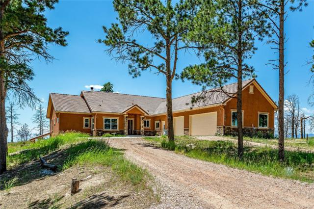 7601 Rushing Wind Grove, Colorado Springs, CO 80908 (#2278006) :: The Dixon Group