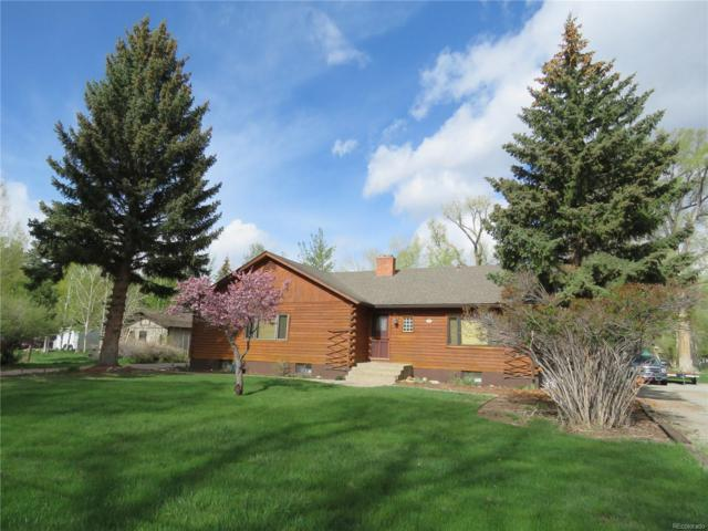 216 N Pleasant Avenue, Buena Vista, CO 81211 (MLS #2278535) :: Bliss Realty Group