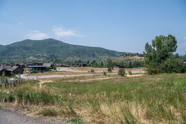 1455 Robert E Lee Lane, Steamboat Springs, CO 80487 (#2279671) :: The Brokerage Group