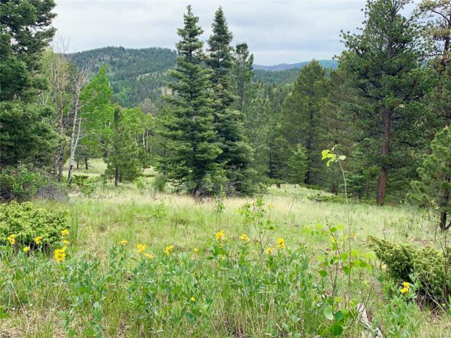 Eagle Springs Ct., Westcliffe, CO 81252 (#2280006) :: The DeGrood Team