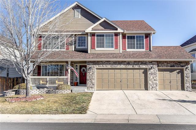 346 Hampstead Avenue, Castle Rock, CO 80104 (#2282781) :: The HomeSmiths Team - Keller Williams