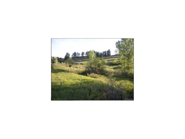 10245 Inspiration Drive, Parker, CO 80138 (MLS #2283521) :: 8z Real Estate