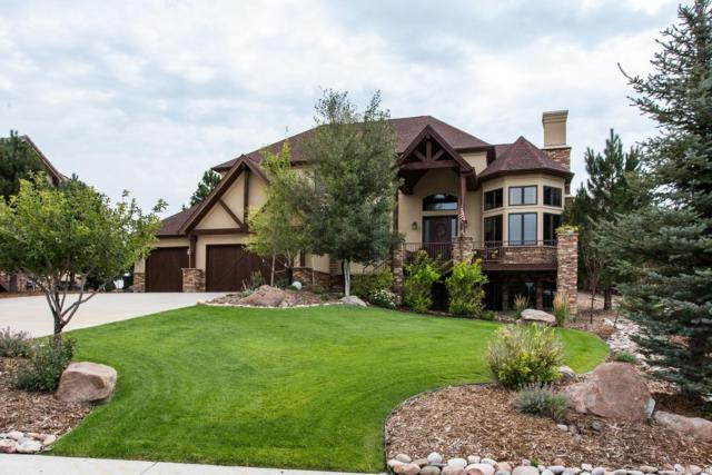 5326 Grand Fir Court, Parker, CO 80134 (#2284263) :: The DeGrood Team