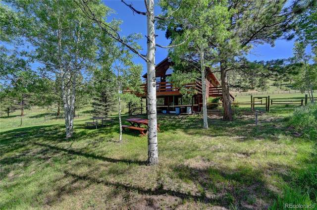 13877 Wamblee Trail, Conifer, CO 80433 (#2284265) :: Berkshire Hathaway Elevated Living Real Estate
