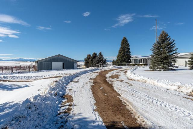 11572 Heidemann Avenue, Franktown, CO 80116 (#2285035) :: The Peak Properties Group