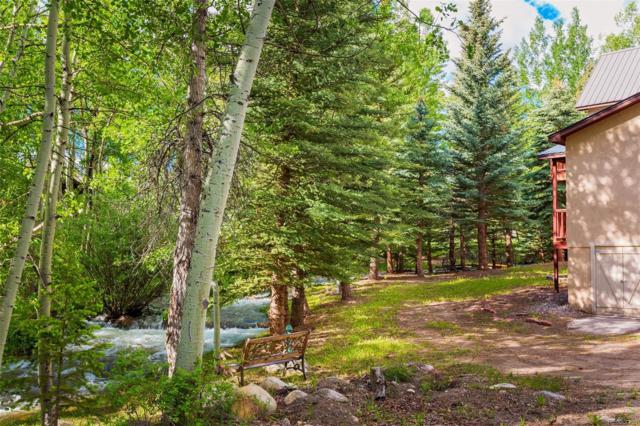 14199 County Road 261C, Nathrop, CO 81236 (#2286915) :: The DeGrood Team
