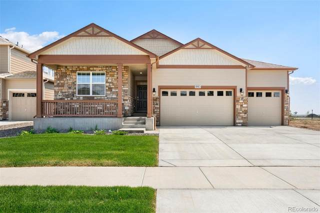 1727 Summer Bloom Drive, Windsor, CO 80550 (#2288968) :: My Home Team
