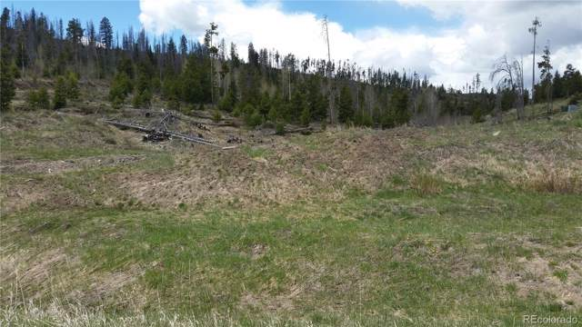 144 County Road 4033, Grand Lake, CO 80447 (#2289142) :: The Gilbert Group