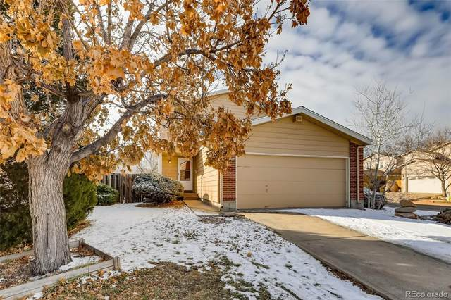11843 Sherman Street, Northglenn, CO 80233 (#2294078) :: iHomes Colorado