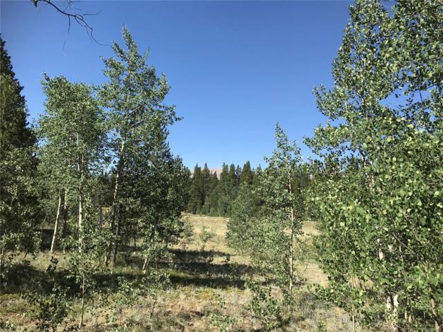 46 Lot Glacier Ridge Road, Alma, CO 80420 (#2296394) :: Bring Home Denver
