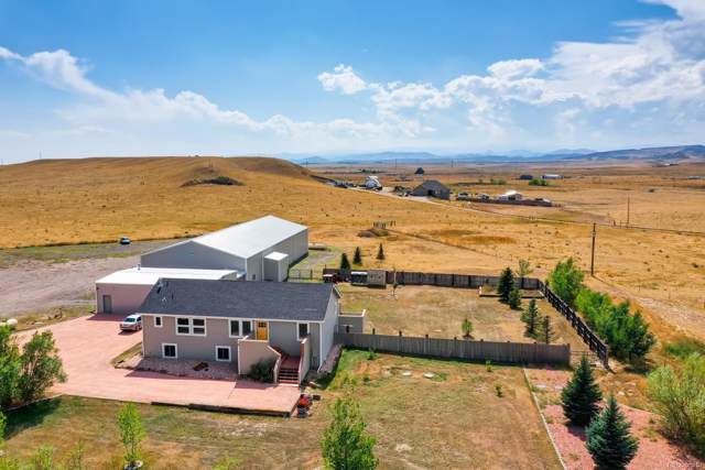 439 Rodeo Hills Lane, Wellington, CO 80549 (#2299190) :: The DeGrood Team