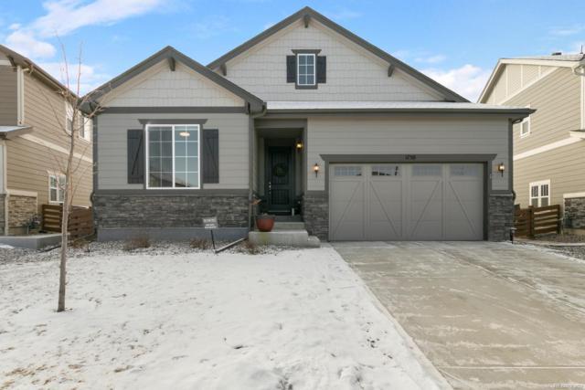 1130 Nova Place, Erie, CO 80516 (MLS #2299300) :: JROC Properties